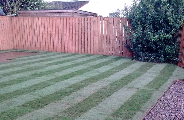 Completion of Turfing