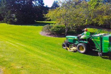 Grass & Weed Spraying